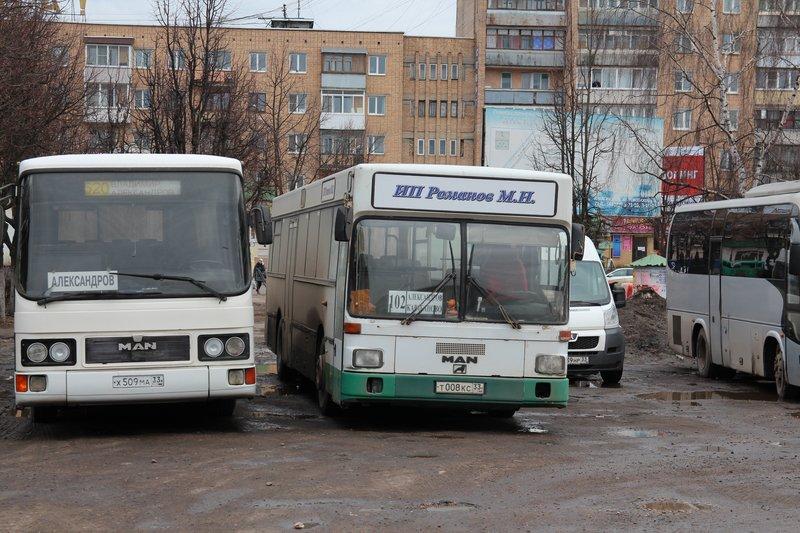 На площади стоят именные автобусы