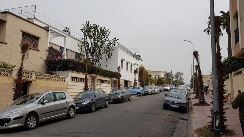 Богатый район недалеко от резиденции короля. Обратите внимание на 7-метровый кактус слева