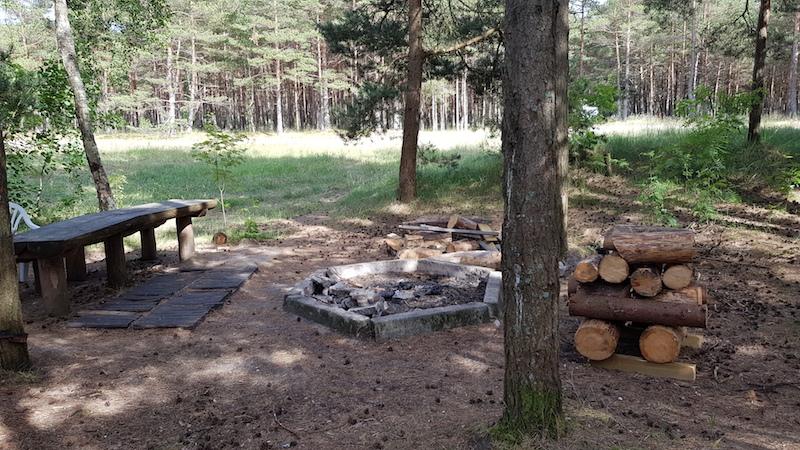 Место для барбекю с бесплатными дровами