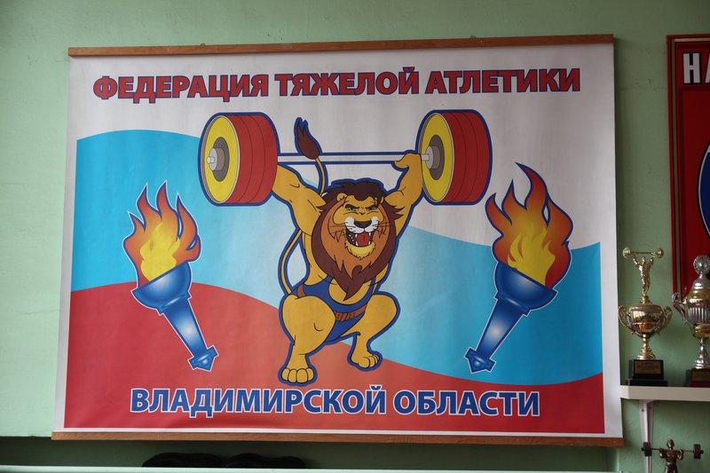Гибрид с гербом Владимирской области